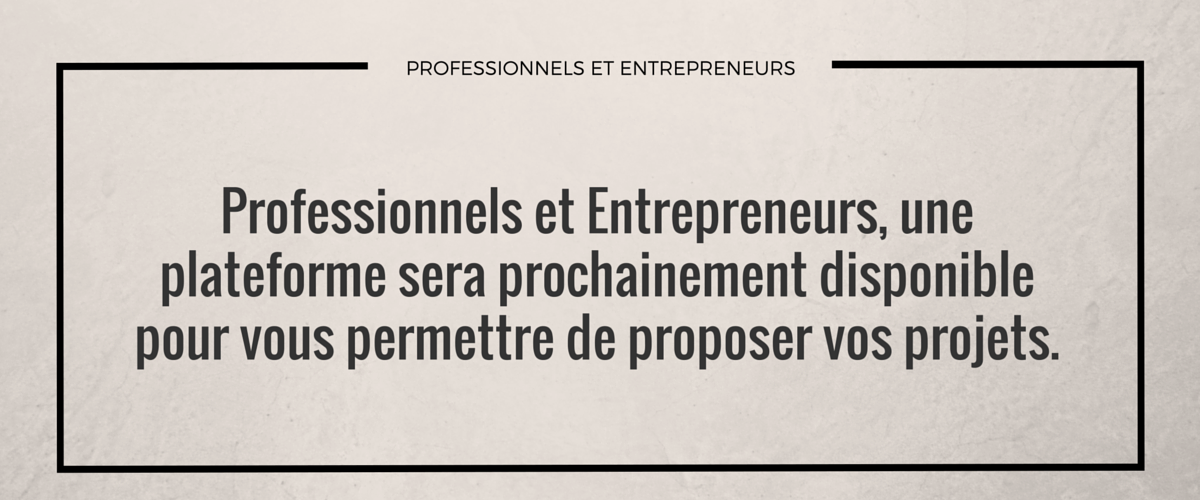 Un-plateforme-dédiée-aux-professionnels-et-entrepreneurs-prochainement-disponible.